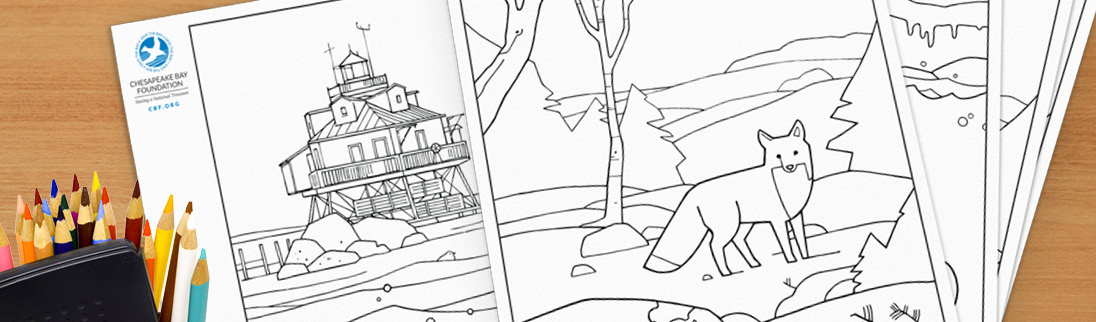 Survey Chesapeake Bay Coloring Pages Chesapeake Bay Foundation