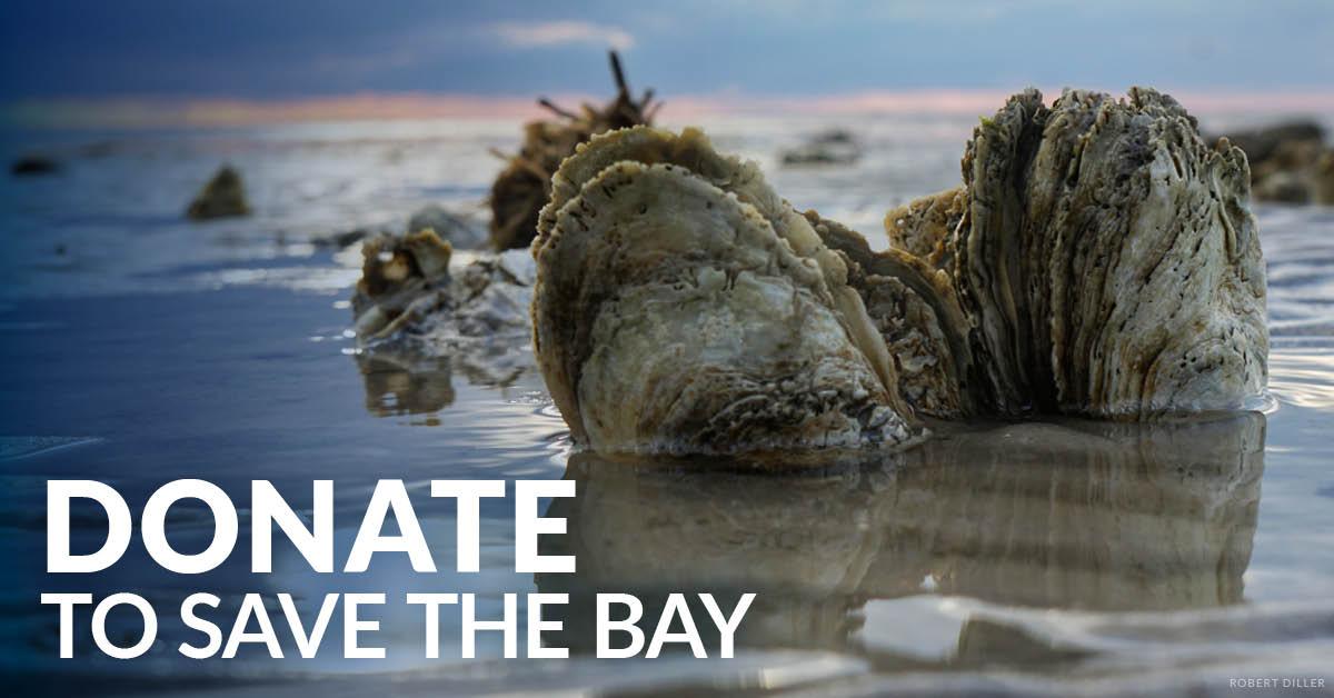 Make A Gift - Chesapeake Bay Foundation